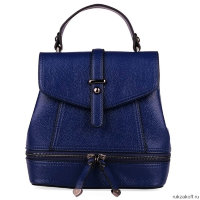 Сумка-рюкзак Рюкзак Audrey R8-007 Dark Blue